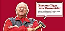 Unsere Hammer-Tipps